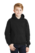 YOUTH Hooded Sweatshirt (3 COLORS)