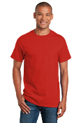 ADULT Short Sleeve Tee (2 COLORS)